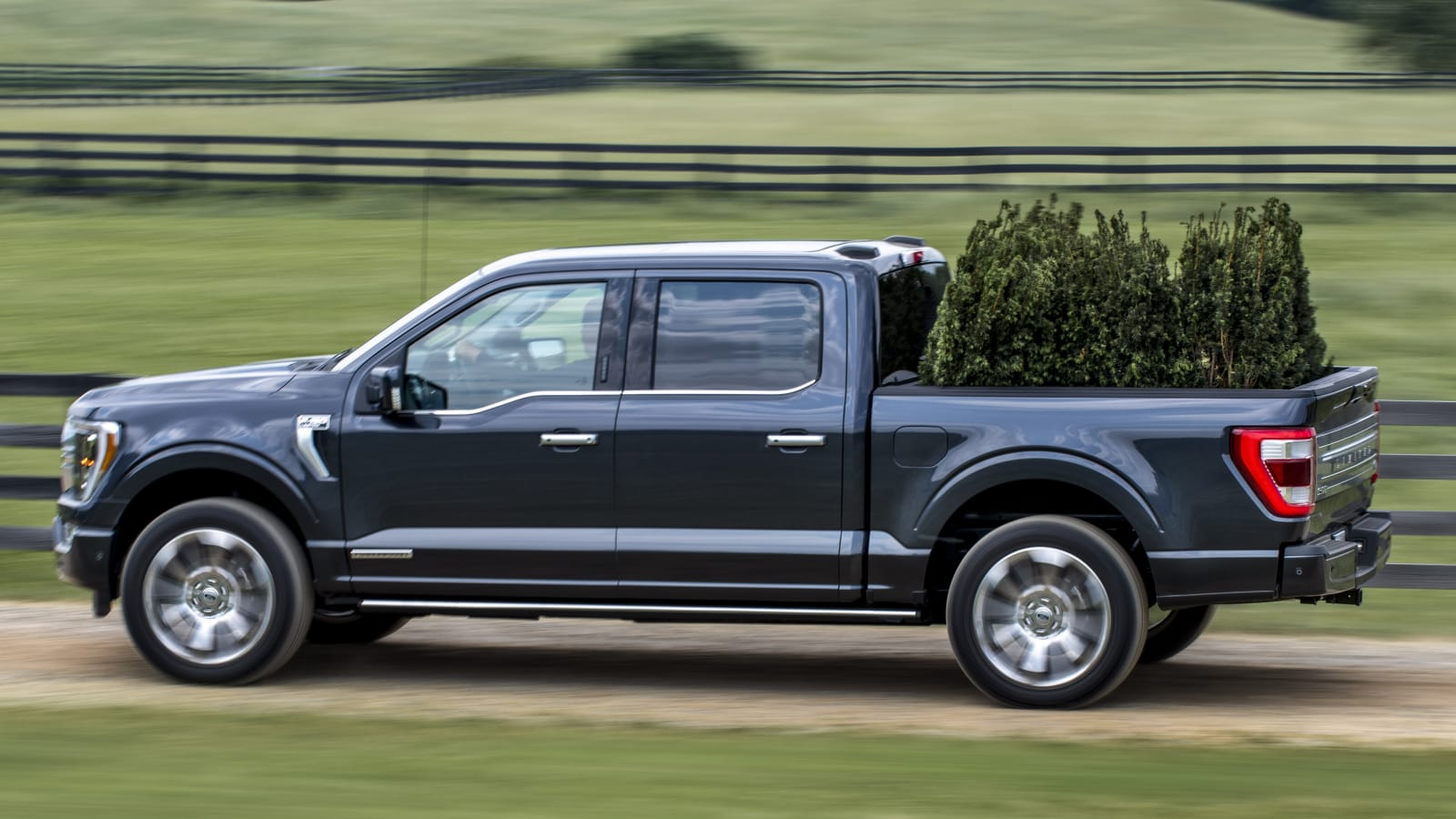 All new F 150 0132