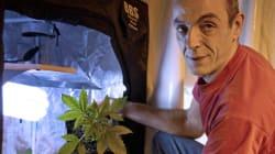 Cannabis social club: après une garde à vue, le porte-parole du mouvement convoqué au