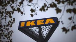 Ikea disbosca foreste protette?
