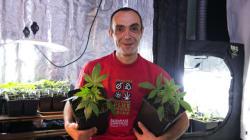 Cannabis social club: La fédération déclarée à la préfecture