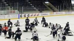 Le Phoenix de Sherbrooke sort gagnant dès sa première année