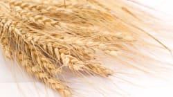 Les nouvelles fibres: super aliments ou