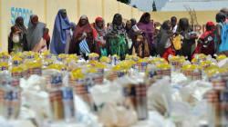 Why Food Aid Fuels International