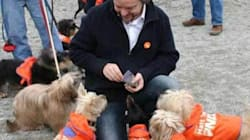 NDP Campaign Going To The