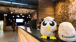 Unpaid HootSuite Interns Cash