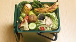 Harvest Power: Turning Your Rotten Food into
