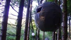 La tente dans les arbres (à 12.000