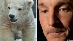 Tory MP Slammed For Polar Bear