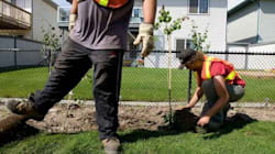 Canada Boosts Foreign Worker