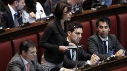 Businarolo (M5S) e Pittarello, il collaboratore di Casaleggio: