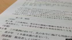 日本の「ファンタジーアニメ」所持でNZ男性が禁固刑に