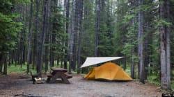 B.C. Camper Killed In Freak
