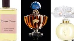 Notre palmarès des parfums les plus luxueux au
