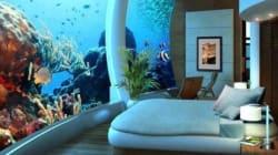 Stressé? Ces aquariums seront parfaits pour vous