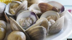 You Should Shell Out for This PEI Clam Digging