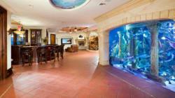 Acquari: quando la vasca per pesci è di lusso