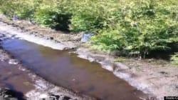Des faiblesses décelées sur le pipeline d'Enbridge