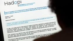 Hadopi : l'unique condamné à une coupure internet