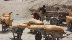 Fertilizzanti-bomba, come combatterli