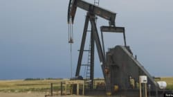 Is Oil The Solution For
