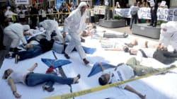 Milano Moda: flash mob davanti negozio di Zara