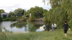Quatre enfants, tombés dans un étang, entre la vie et la