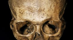 Homo sapiens: notre espèce est de 100 000 ans plus vieille qu'estimé