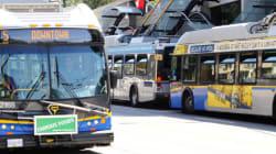 Hastings Bus Crash Kills