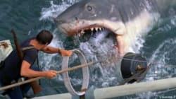 Le film «Les Dents de la Mer» sera présenté sur la plage du Parc