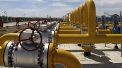 Gas, petrolio, edilizia: le 53 aziende italiane in