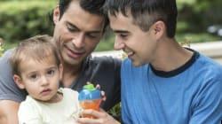 Choix reproductifs des couples gais: l'expérience