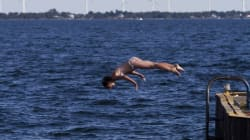 Attempt To Swim Lake Ontario Somes Up