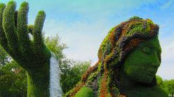Il Festival Mosicultures di Montreal: 50 sculture giganti di fiori e foglie