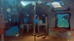 Un bar de pole dance oublié au fond de la