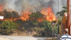 Incendi in Sardegna, scoppia la polemica