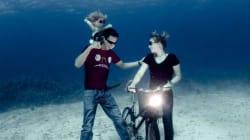 Ils posent au fond de la mer comme à la