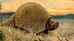 Préhistoire: les animaux géants fertilisaient l'Amazone grâce