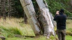 Huge Milestone In Haida