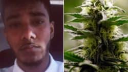 Un homme perd son emploi après avoir demandé de la marijuana sur