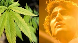 Trudeau's Pot Position: High-Risk,