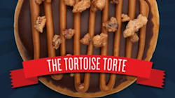 'The Tortoise Torte' Wins Top