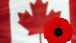 Remembrance Day Is More Than Wearing a Poppy at a