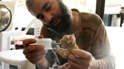Que font les rebelles syriens quand ils ne sont pas au