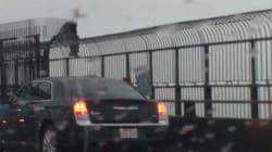 Un individu grimpé dans la structure du pont Jacques-Cartier est