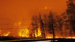 B.C. Wildfires Hit Forests, Spare