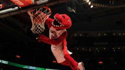 Raptors Mascot Is