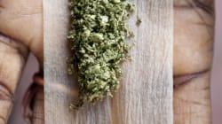 Le Colorado s'apprête à légaliser la consommation de marijuana, une bonne