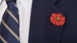 Dollar Store Clarifies Poppy