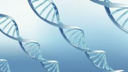 11 gènes découverts pour la maladie