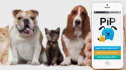 L'application miracle quand on a perdu son animal de